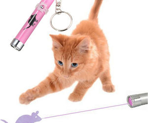 Interactive led Light Training Cat Play Toy Laser Pointer Pen Mouse Animation*, an item from the 'Preying Kitties...' hand-picked list
