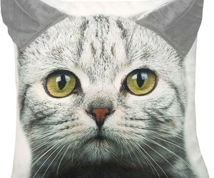Grey Tabby Kitty Cat Printed Throw Pillow with 3D Ears 18 X 18, an item from the 'Throw Pillows' hand-picked list
