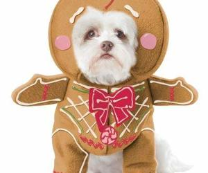 California Costume Collections Gingerbread Pup Dog Costume, Medium, an item from the 'Dog Costumes and Toys' hand-picked list