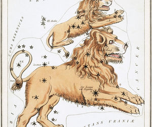 Leo Constellation; Astrology Star Chart; Zodiac Engraving by Sidney Hall, an item from the 'Zodiac Shrine' hand-picked list