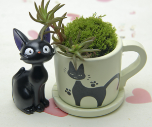 Black Cat Figurines Resin Cacti Micro Landscape Flowers Succulent Plants Pot, an item from the 'Indoor Garden' hand-picked list