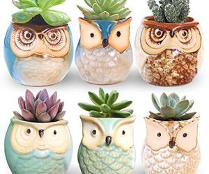ROSE CREATE 6 Pcs 2.5 Inches Owl Pots, Little Ceramic Succulent Bonsai Pots, an item from the 'Pretty Planters' hand-picked list