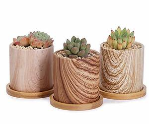 Greenaholics Succulent Pots - 3 Inch Wood Grain Cylinder Ceramic Planters for Sm, an item from the 'Pretty Planters' hand-picked list