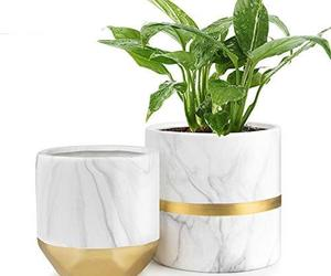 "HOMENOTE White Ceramic Flower Pot Garden Planters 6"" Pack 2 Indoor, Plant Contai, an item from the 'Pretty Planters' hand-picked list"