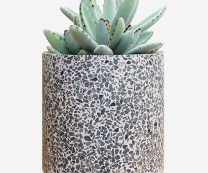 Terrazzo Flower Pot - Modern Rose Planter | Indoor Outdoor Plant Pot 6 inch, an item from the 'Pretty Planters' hand-picked list