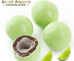 Andy Anand Chocolate Key Lime Pie Cordials Gift Box With 1 lbs Free Air Shipping, an item from the 'Key Lime - A Taste of SPRING ' hand-picked list