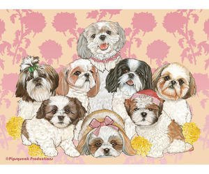 Shih Tzus Fleece Blanket, an item from the 'I Shih-Tzu Not' hand-picked list