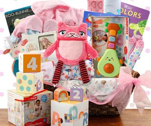 Grand Welcome: Baby Girl Gift Basket, an item from the 'Community Picks: Shower Me With Love!' hand-picked list