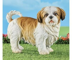 Shih Tzu Outdoor Resin Statue Figure (col) J7, an item from the 'I Shih-Tzu Not' hand-picked list