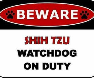 Top Shelf Novelties Beware Shih Tzu Watchdog On Duty (v2) Dog Sign SP1427, an item from the 'I Shih-Tzu Not' hand-picked list