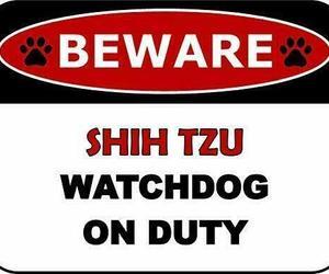 Top Shelf Novelties Beware Shih Tzu Watchdog On Duty (v2) Dog Sign SP1427, an item from the 'I Shih-Tzu Not' hand-picked list