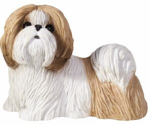 Sandicast Sculpture: Gold and White Shih Tzu, Standing, Small Size (SS16409), an item from the 'I Shih-Tzu Not' hand-picked list