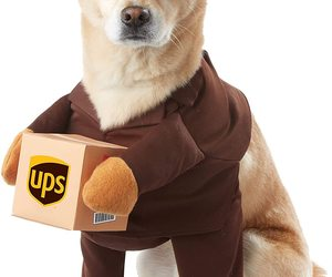 California Costumes Brown UPS Pal Dog Costume X-Small, an item from the 'Dog Costumes and Toys' hand-picked list