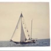 nevroica42's profile picture