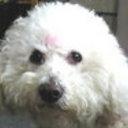 sunlori's profile picture