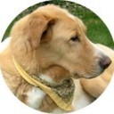 samsplace's profile picture