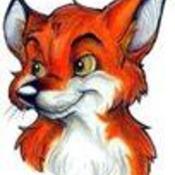 RedFoxLox's profile picture