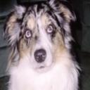 Dmom96's profile picture