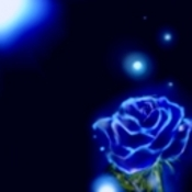 Blue rosespace thumb175