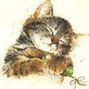 tigger2097's profile picture
