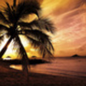 Earth-beach-30004_thumb175