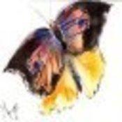MyrnaM's profile picture