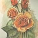 Orangeroses72l thumb128