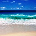 OceanWavesWS's profile picture