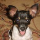 Critter pics 006 thumb128