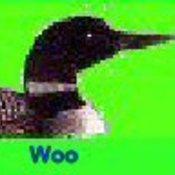 Green woo small thumb175