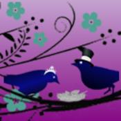 ravencrowsnest's profile picture