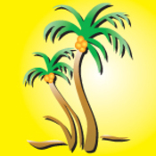 Avatar coconutpalmdesigns large thumb175