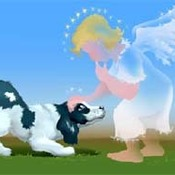 Dog and angel thumb175