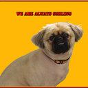 petrutech's profile picture