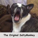 Saltymonkey-market's profile picture