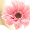 katyem's profile picture