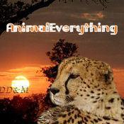 Animaleverything avatar thumb175