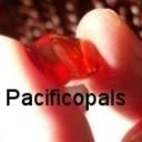 pacificopals's profile picture