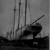Cape d or a tern schooner and steam built cape d or  1918   collied  1925 at la have also it was registered there 373 tons thumb175