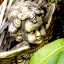 suskom's profile picture