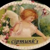 cipmunk's profile picture