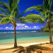 Tropical_lagoon_thumb175