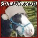 notsuthrnhorsenut's profile picture