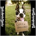 Bobisbroke's profile picture