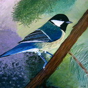 Blue chicadee painting thumb175