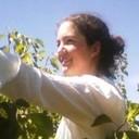Picking cherries squarish thumb128