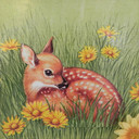 Sybilline's profile picture