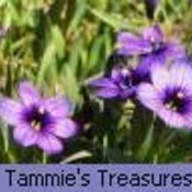 Copy of purpleweeds2 1  thumb175  1  thumb175