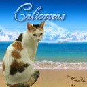 calicoseas's profile picture
