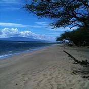 Serene sea thumb175